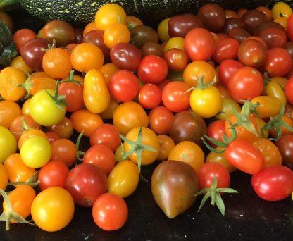 Mini tomatoes - Medley mix