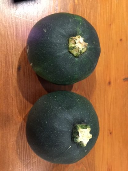 Gem squash is popular with Australia's South African community
