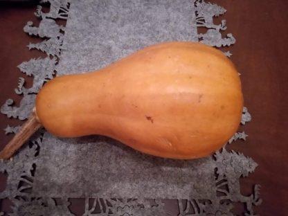 Tan Gramma Pumpkin