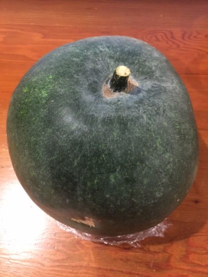 Giant Winter Melon or Indian Ash Gourd