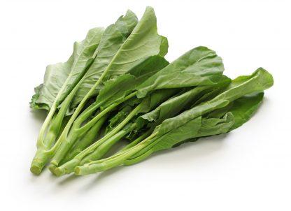 Hong Kong Broccoli Chinese Cabbage seeds. B11
