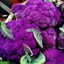 Purple Sicily Cauliflower. B14