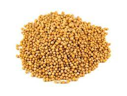 Yellow Mustard seeds. D6