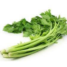 Chinese Celery seeds. B5