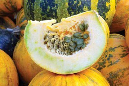 Pepita (hulless) pumpkin seeds