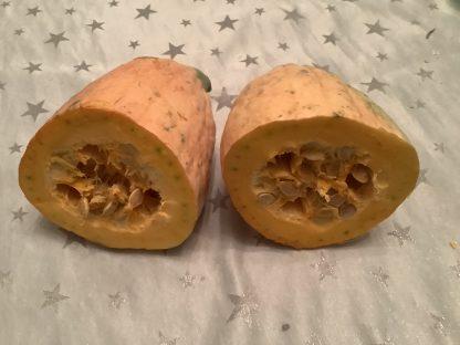 Orange Banana Squash